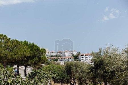 Photo pour Focus sélectif d'arbres et de bâtiments avec ciel clair à l'arrière-plan en Catalogne, Espagne - image libre de droit