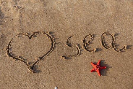 Photo pour Vue du dessus du panneau cardiaque avec lettrage mer et étoile de mer rouge sur sable - image libre de droit