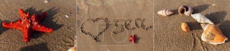 Photo pour Collage de signe d'amour avec lettrage de mer et coquillages avec étoile de mer sur sable de plage - image libre de droit