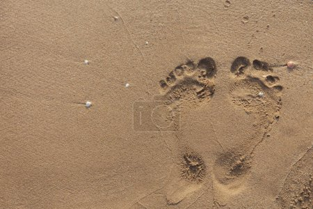 Photo for Top view of footprints on wet beach sand - Royalty Free Image
