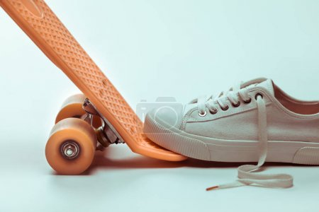 Hipster skateboard and sneaker