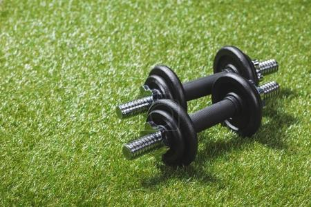 two black iron dumbbells on meadow