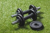 dumbbells with weight plates on grass