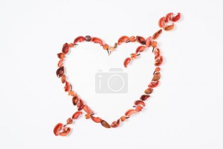 Photo pour Vue de dessus du coeur et flèche de fruits séchés, isolé sur blanc - image libre de droit