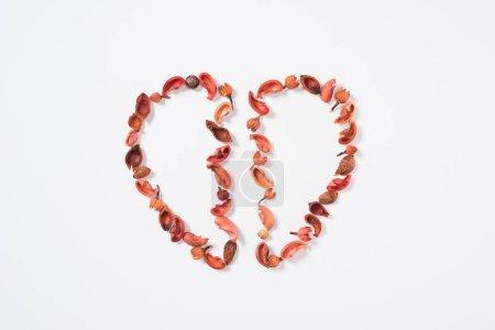 Photo pour Vue de dessus des deux moitiés du cœur de fruits séchés, isolé sur blanc, Valentin concept - image libre de droit