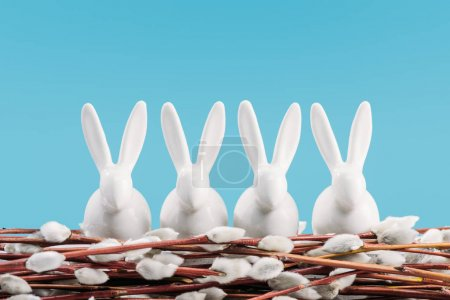 easter rabbits on catkins isolated on blue
