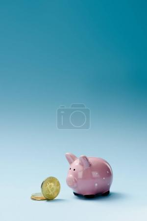 Close up view of pink piggy bank and golden bitcoins on blue backdrop