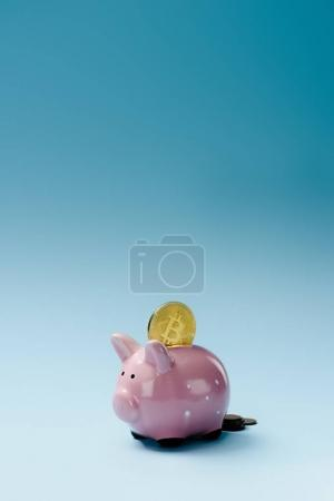Close up view of pink piggy bank and golden bitcoin on blue backdrop