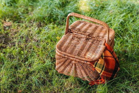picnic basket on green grass