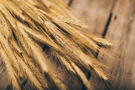 Photo for Close-up view of ripe wheat ears on wooden table top - Royalty Free Image