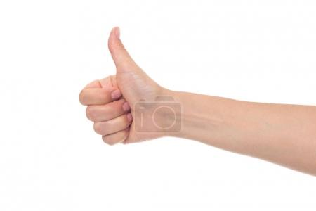 Photo for Cropped shot of hand showing thumb up isolated on white - Royalty Free Image