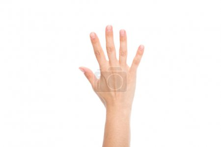 Photo for Partial view of female hand showing five fingers isolated on white - Royalty Free Image