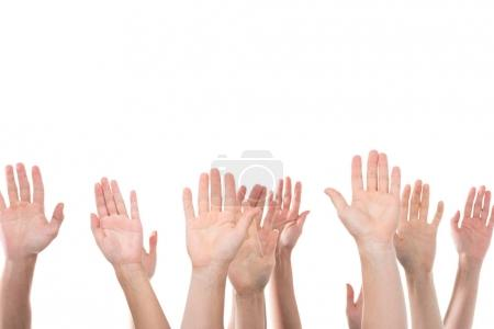 people raising hands