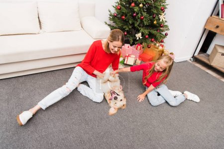 family and dog at christmastime