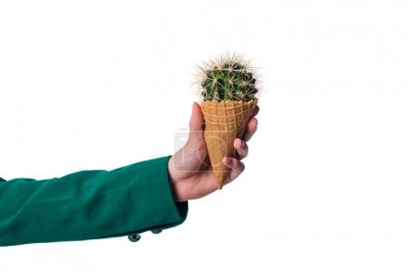 Photo for Cropped view of girl holding cactus in waffle cone, isolated on white - Royalty Free Image