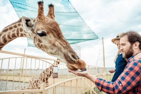 Photo pour Vue latérale du père et de la petite fille nourrissant la girafe dans le zoo - image libre de droit
