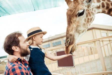 family feeding giraffe in zoo