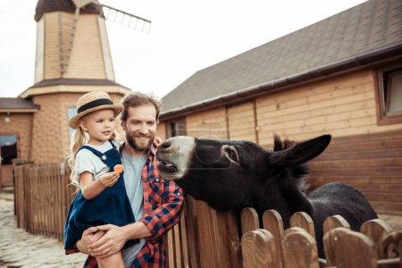 family feeding donkey in zoo