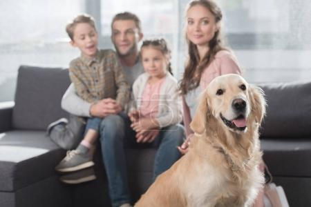 family and dog in living room
