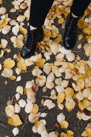 Photo pour Photo recadrée de femme en cuir belle bottes debout sur la route recouverte de feuilles mortes - image libre de droit