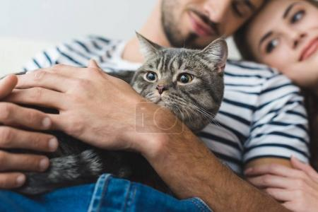 close-up shot of young couple holding cat in hands and embracing