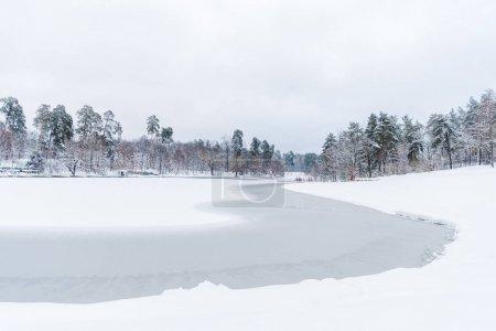 Photo pour Vue panoramique sur les arbres enneigés et le lac gelé dans le parc d'hiver - image libre de droit