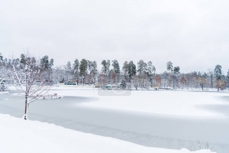 beautiful snow covered trees and frozen lake in winter park