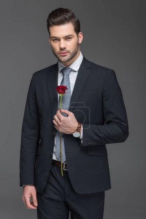 handsome bearded man in suit holding red rose, isolated on grey