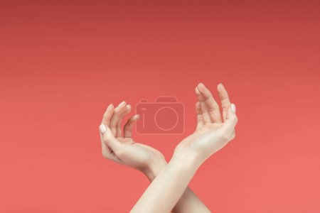 partial view of tender female hands, isolated on red