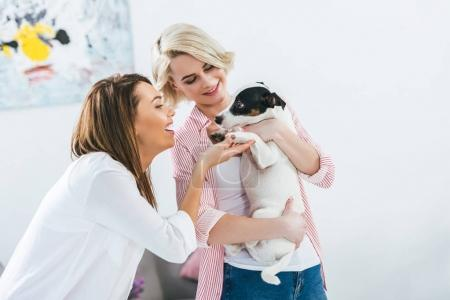 beautiful cheerful girls with jack russell terrier dog at home