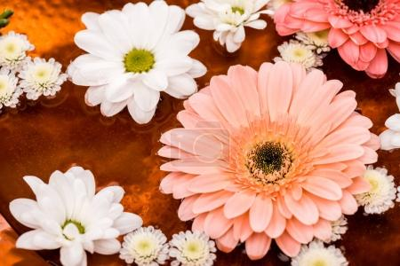daisies and gerbera flowers in metalic plate for spa procedure