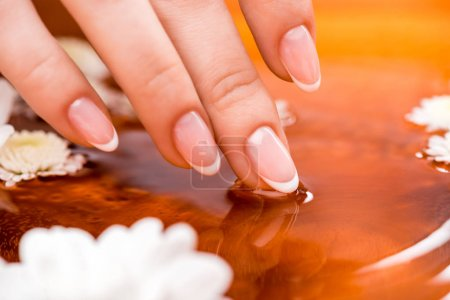 cropped view of woman making bath with flowers for nails