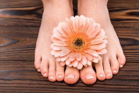 Photo pour Recadrée vue de pieds féminins avec pédicure naturelle et gerbera sur la surface en bois - image libre de droit