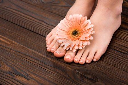 Photo pour Vue recadrée des pieds avec pédicure naturelle et fleur de gerbera sur la surface en bois - image libre de droit