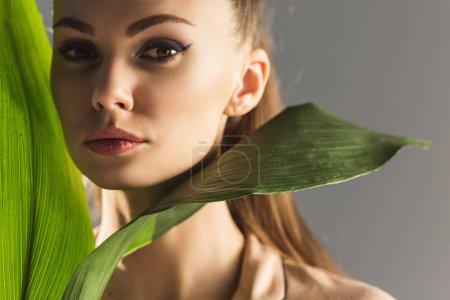 attraktives trendiges Mädchen mit grünen Blättern, das in die Kamera blickt, isoliert auf grau
