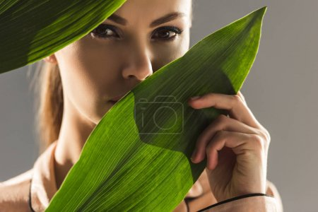 Photo for Portrait of young beauty with green leaves, isolated on grey - Royalty Free Image