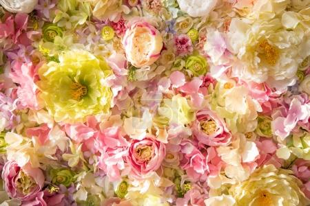Photo for Beautiful floral background with tender flowers - Royalty Free Image