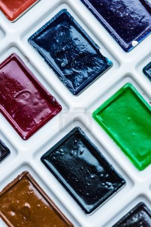 Close-up view of set of colorful paint in plastic white box