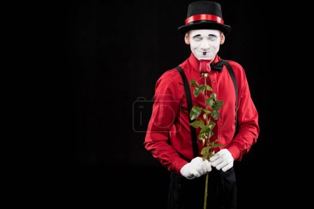 mime sniffing red rose with closed eyes isolated on black