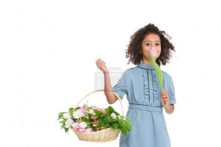 beautiful little child holding basket of flowers isolated on white