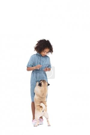 beautiful little child in dress with pug isolated on white