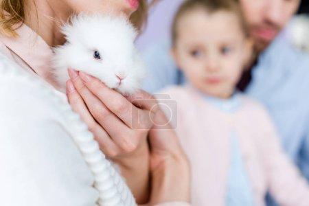 Foto de Madre con conejito lindo holding familiar - Imagen libre de derechos