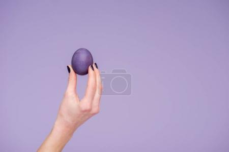Easter egg in female hand isolated on violet