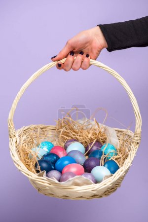 Female hand with Easter basket with colored eggs isolated on violet