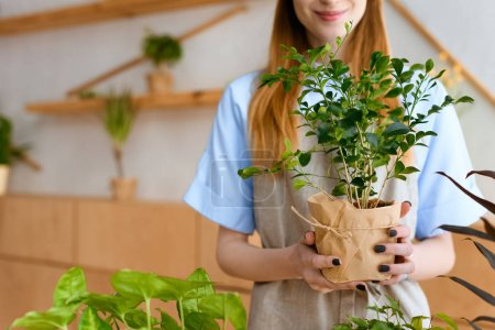 cropped shot of smiling young florist holding green houseplant in flower shop