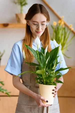 beautiful smiling young florist holding potted calla flowers