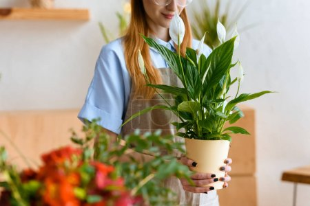 cropped shot of smiling young florist holding potted calla flowers in flower shop