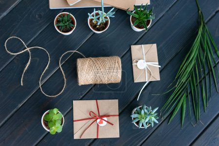 beautiful succulents in pots, palm leaf, rope and envelopes on arranged on table top