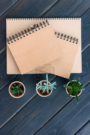 Photo pour Vue du dessus des cahiers avec couvertures vierges et succulents dans des pots sur le dessus de table en bois - image libre de droit