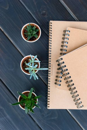 top view of green succulents in pots and notebooks on wooden surface
